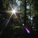 Der erste Sonnenstrahl (1)